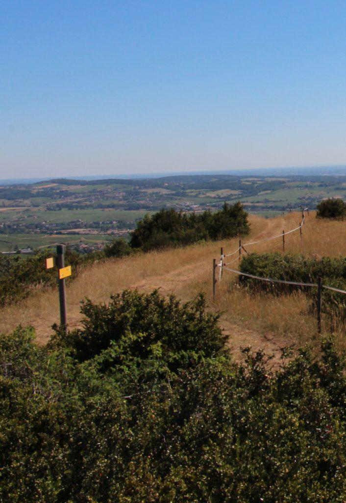 Sentier d'accès au sommet du Mont Pouilly