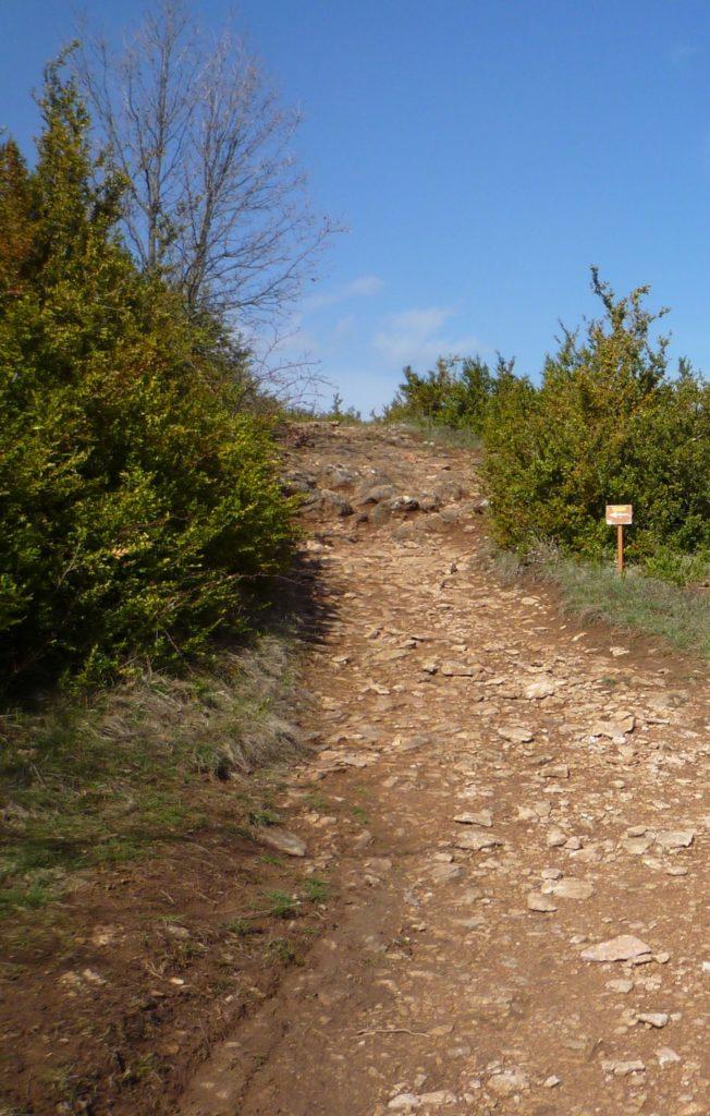 Sentier d'accès au sommet de la Roche de Vergisson